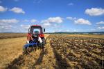 Краевые гранты для поддержки фермерства